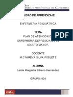 Plan de atencion psiquiatria.pdf