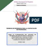 TDR- Mecanica de suelos (Pavimentos).doc