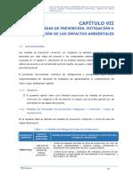 CAP 7 PLAN DE MANEJO AMBIENTAL.docx