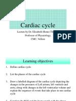 CVS_4_cardiac cycle