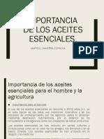 IMPORTANCIA DE LOS AE