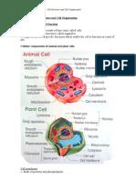 Form 4 Biology (Chapter 2