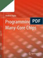 2011 Programming Many-Core Chips