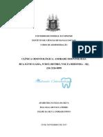 APARECIDA NATÁLIA DA SILVA - ÉLIA OLGA DE PAULA PEDRO - FELIPE DA SILVA ANDRADE PINTO_TCC e termo de aprovação
