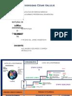 HISTORIA NATURAL DE LA ENFERMEDAD CHIKUNGUNYA-JAIME ANDERSON RODAS GIL.docx
