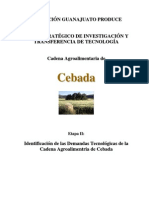 CEBADA_Reporte II