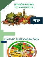 357642381-NUTRICION-Y-ALIMENTACION-5-basico-1-ppt
