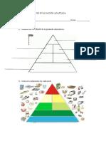 examencienciasnaturales3primariaadaptado-piramide