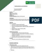 PLANIFICACION_DE_CLASE__FORMATO.pdf