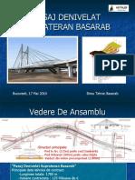 BASARAB - Elemente Tehnice Caracteristice