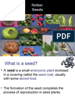 seedstructure-130129220104-phpapp01.pdf