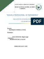 MODELOS DE ENFERMERIA_POLO DEUDOR