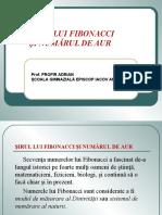 fdocumente.com_fibonacci-55d48e55846a1.ppt