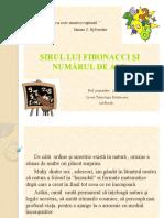 sirul_lui_fibonacchi.pptx