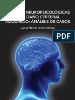 Secuelas_Neuropsicologicas_en_el_Dano_Ce.pdf