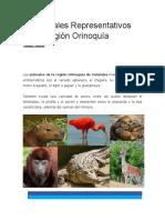 10 Animales Representativos de la Región Orinoquía