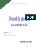 proiect practica
