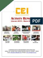 CEI Activity Report