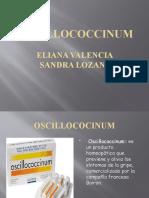 DIAPOSITIVAS OSCILLOCOCCINUM