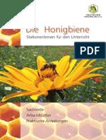 Honigbiene_Stationen_lernen_Web