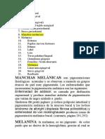 DEFINICION CUSTODE MIGUEL.docx