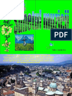 Salzburg (Pamfil)
