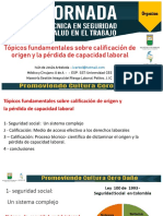 6. Calificacion PCL y origen. Ivan Arboleda