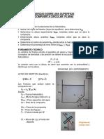 FUER SOBRE SUPF.pdf