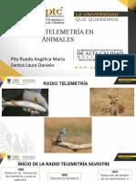 RADIO TELEMETRIA.pptx