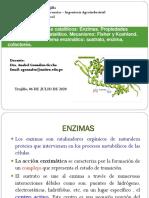 T-3 Enzimas y catalisis (1)