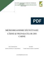 MICROORGANISME DĂUNĂTOARE CĂRNII ȘI PREPARATELOR DIN CARNE