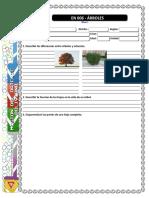 EN 006 - Arboles.pdf