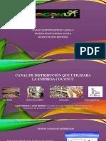 DIAPOSITIVA CANALES DE DISTRIBUCION MILSON