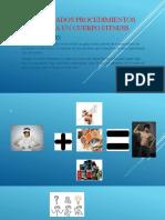 Adecuados procedimientos hacia un cuerpo fitness ppt