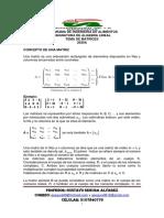 TALLER Y CONCEPTUALIZACION DE MATRIZ 2020 A-convertido (1)