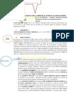 ELSA CHOLIMA demanda ejecutiva (1)