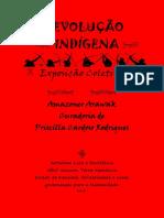 REVOLUÇÃO INDIGENA e-Book Arte.pdf