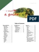 Risen - A Guide - V1_3_English