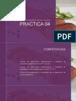 PRACTICA 04. CHORIZO.pptx