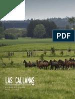 3__las_callanas
