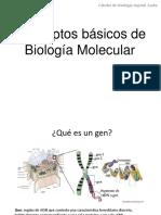Conceptos de biología molecular
