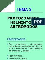 TEMA 2.ppt