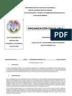 GUIA-PROGRAMATICA-ORGANIZACION-ESCOLAR-II-2020-ACTUALIZADA