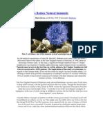IMVA Vaccines Reduce Natural Immunity