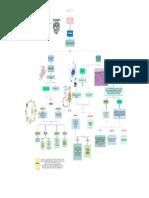 Mapa protozoos.pdf