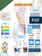 La Delincuencia en el Perú - Infografía