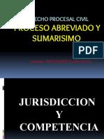 JURISDICCIÓN Y COMPETENCIA .pdf