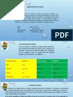 sustantivos diapositivas.pptx