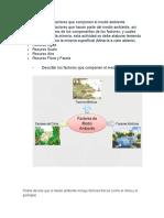 Describir los factores que componen el medio ambiente