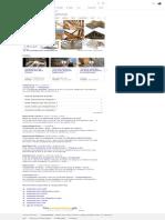 charpente bois - Recherche Google
